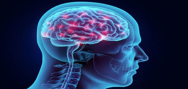 اعراض عدم وصول الدم للمخ وكيفيه علاجها بدون ادوية