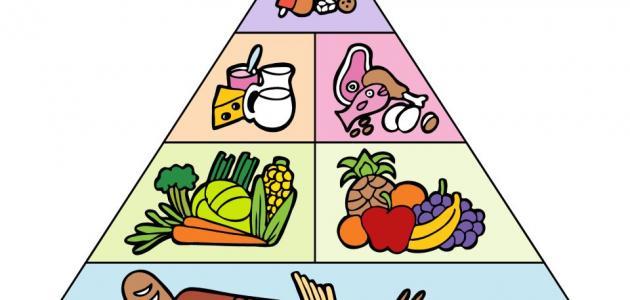 مكونات الهرم الغذائي الصحي للأطفال الصغار