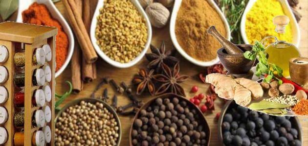 5 طرق لعمل البصل البودرة في المنزل واضراره