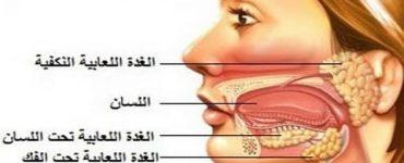 اسباب انتفاخ الغدد اللعابية تحت اللسان وكيفيه علاجها