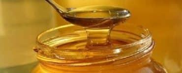 فوائد عسل البرسيم لتسمين 20 كيلو شهريا