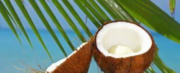فوائد تناول سكر جوز الهند لمرضي السكر
