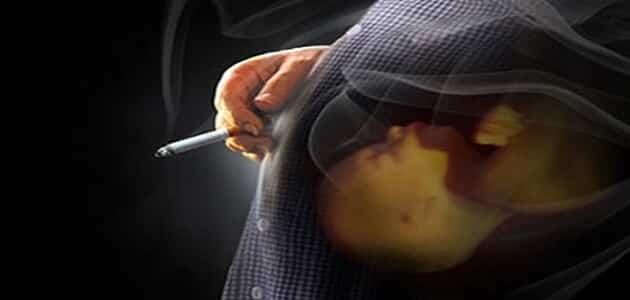 كم عدد السجائر المسموح بها يوميا للحامل