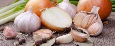 كيفية تجفيف البصل والثوم