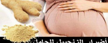 أضرار الزنجبيل للحامل في الشهور الأولى