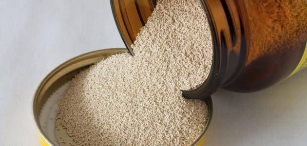 كيفية صناعة خميرة الخبز الطازجة