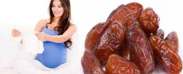 مافوائد التمر للحامل في الأشهر الأولى